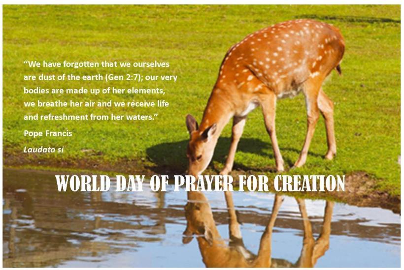 Creation-image-